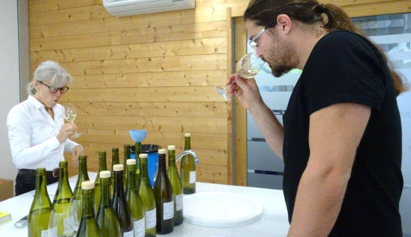Chapelle de Novilis : assemblages 2017- vins blancs.